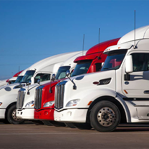 Trucks, Buses & Heavy Equipments
